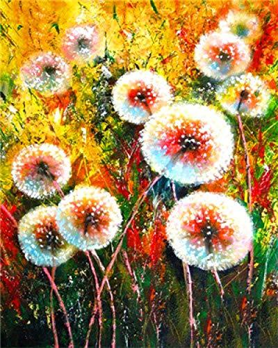 Pintar por Numeros para Pintado mano Pintura Bricolaje Lienzo Pinceles y Pinturas...
