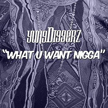 What U Want Nigga