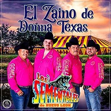 El Zaino de Donna Texas