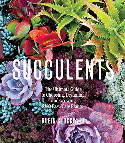 Price comparison product image Succulents: The Ultimate Guide to Choosing,  Designing,  and Growing 200 Easy Care Plants (Sunset)