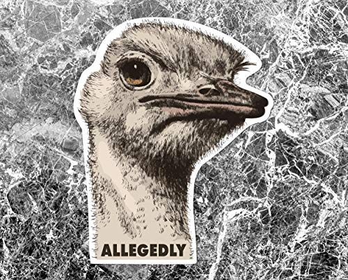 Allegedly Sticker, Vinyl Sticker Decal, Inspired by Letterkenny Decal, Inspired by Letterkenny sticker, Letter Kenny Sticker Decal 7