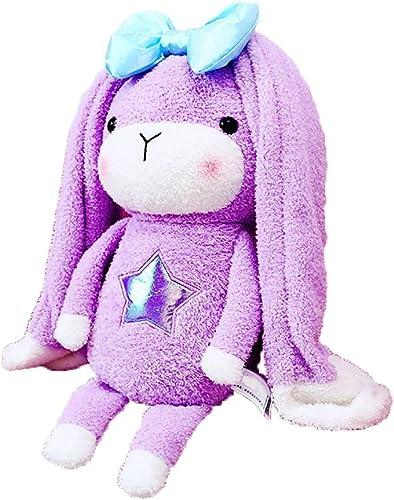 Reconnaissant pour tout Peluche Jouet Miracle Lapin modèles d'explosion de poupées Net poupée Rouge Longues Oreilles Oreiller de Lapin Lapin pour Envoyer des Cadeaux de Filles (Violet) (Taille   28CM)