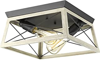 Progress Lighting P350039-143 Briarwood Graphite Two-Light Flush Mount,