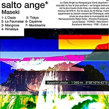 Salto Ange