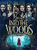 Into The Woods (Plus Bonus Features)