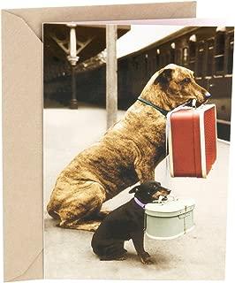Hallmark Shoebox Funny Love Card, Friendship Card, Birthday Card, Anniversary Card (Traveling Dogs)