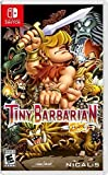 Tiny Barbarian Dx - Switch