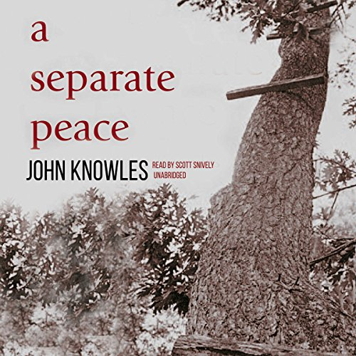 A Separate Peace audiobook cover art