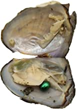 20pcs Oval Freshwater Pearl Oysters with Pearls,Pearl Oysters,Akoya Oysters