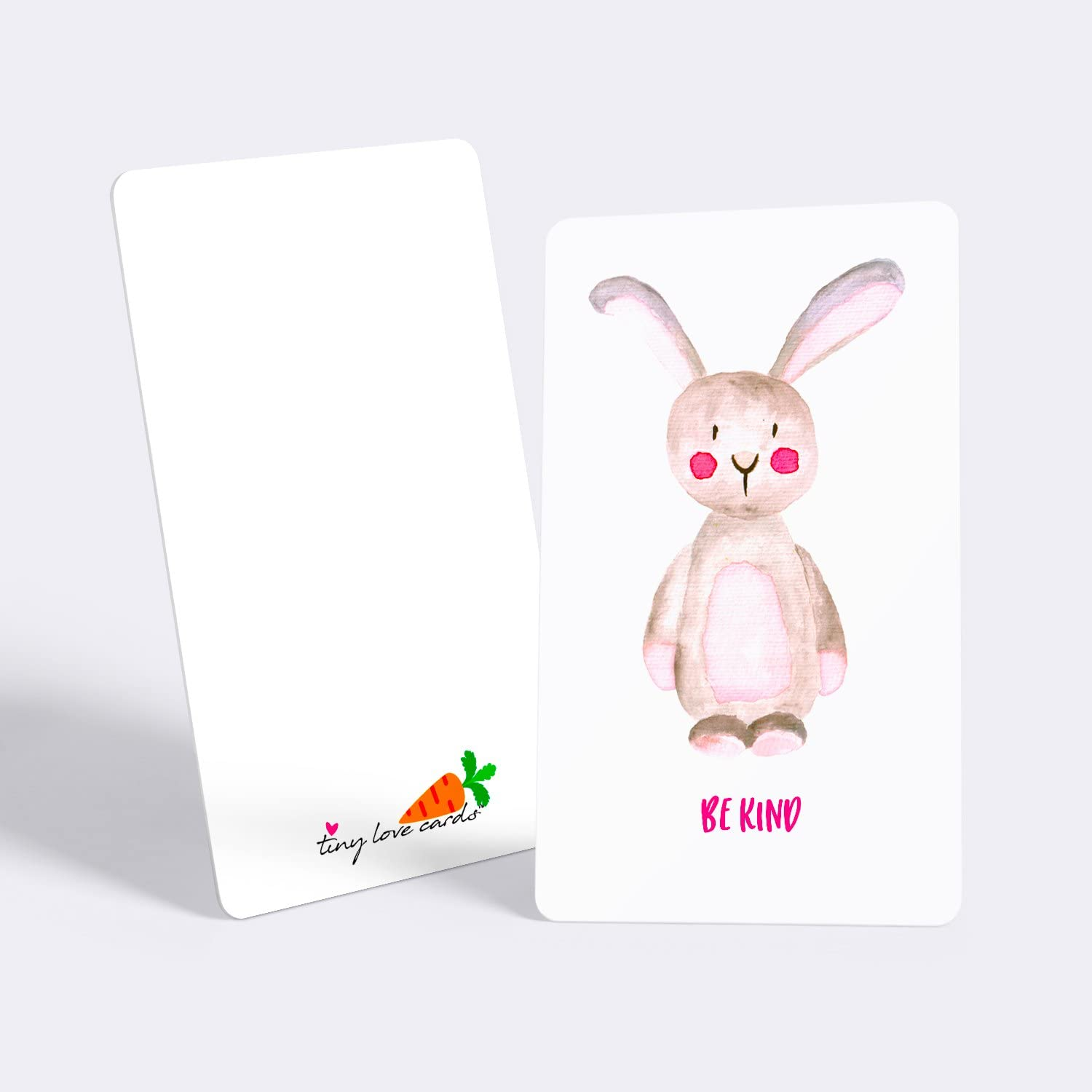 """Small Blank Note Cards Set of 85 Cute Mini Cards for Hand-Written Notes and Any Occasion Cute Animals: 5 Design Variety Set 2/"""" x 3.5/"""" Tiny Love Cards"""