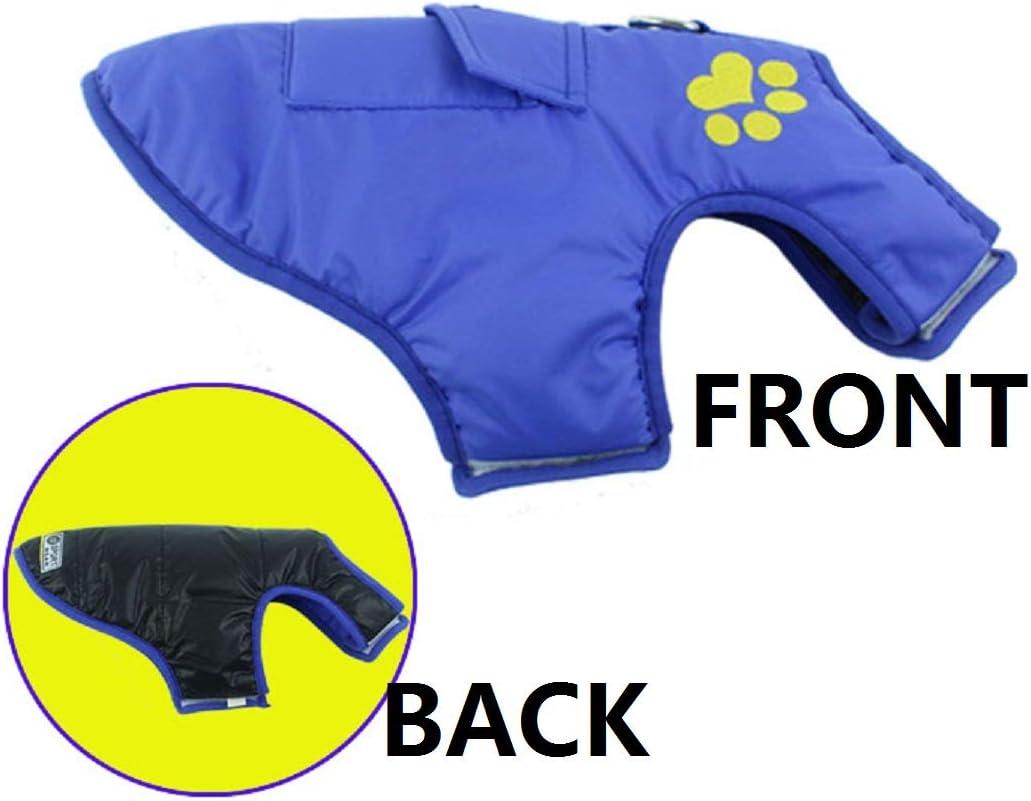 con anillo D chaleco amortiguador color azul DaiShuGuaiGuai Abrigo c/álido para perros impermeable reversible chaqueta para perros 6 colores y 5 tallas contorno de pecho: 35 cm XS