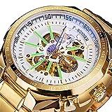 Reloj automático para Hombres Reloj de Hombre de Lujo Mecánico de Lujo Acero Inoxidable Esqueleto Impermeable Auto Winderado Muñeca Luminosa Reloj,C06