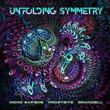 Unfolding Symmetry