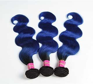 Unprocessed Brazilian Virgin Hair Brazilian Remy Hair Ombre Body Wave Bundles 1 pcs 16 inch 100 g/pcs Total 100 g Human Hair Extensions Hair Weaving (16 inches, 1B/Blue)