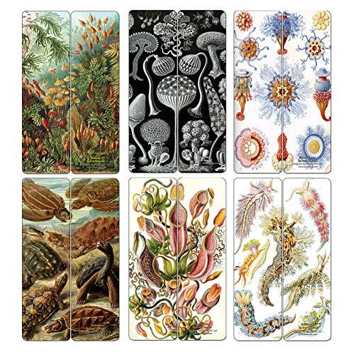 Creanoso Ernst Haeckel Bookmarks Series 2 (12-Pack) - kleinigheidjes Premium Quality Cadeautips voor kinderen, tieners, en volwassenen - collectieve weggevertjes & Party Favors