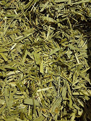 TERRA-PURA Tiernahrung Bio-Grünhafer, Bio-Hafergras 2 kg, TOP Qualität, kammergetrocknet