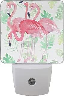 ALAZA 2 Pack Watercolor Green Palm Leaf Pink Flamingo Bird LED Night Light Dusk to Dawn Sensor Plug in Night Home Decor Desk Lamp for Adult