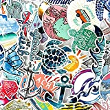 Vsco Girl Stickers para Laptop Nevera Teléfono Skateboard Maleta Hydro Flask Sticker Surf Summer Beach Decal 50pcs