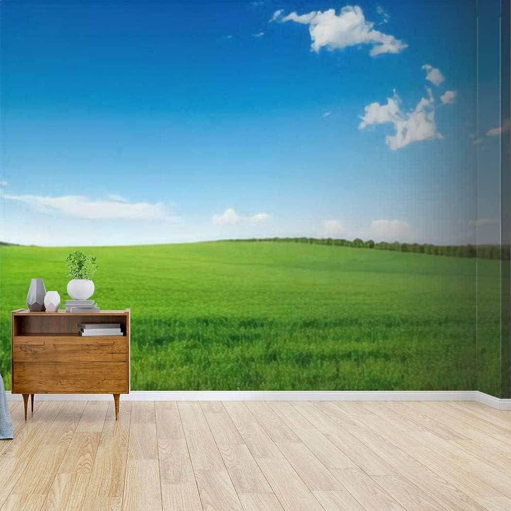 Kanworse Wallpaper OFFer Canvas Print Picturesque Field Self Adh Green Latest item