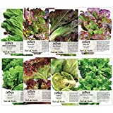 Seed Needs, Lettuce Lovers Seed Collection (8 Individual Packets)...