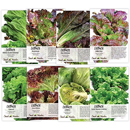 Lovers Seed Collection (8 Packs) Non-GMO Seeds