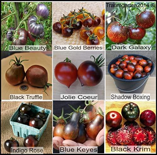 Tomatensamen Dunkle/Schwarze Tomatensorten, TOP Qualität ohne Gentechnik und Pestizide, Saatgut 9 Sorten je 10 Samen für seltene, essbare und gesunde Tomaten, Rarität, extravagant