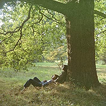 Plastic Ono Band (The Ultimate Mixes)