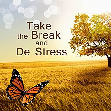 Take the Break and De Stress: Music to Release from Trouble with Sleep, Stress & Anxiety, Posttraumatic Stress Disorder, Dementia