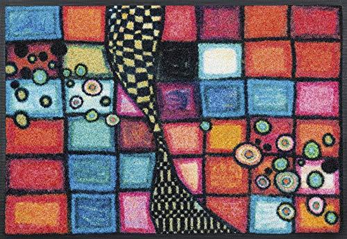 Wash&Dry Fußmatte, Résine Acrylique, Bunt, 50 x 75 cm