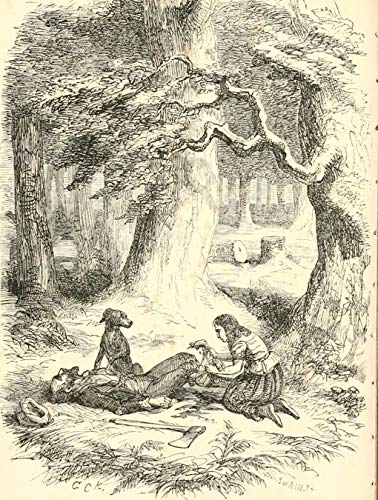 Oil Paint by Number Kits Digital Painting by Numbers for Adults Paint by Number for Kids 16X20 Inch George Cruikshank Out and About A Boy's Adventures Written for Adventurous Boys 11