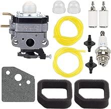 Hayskill 75306258A Carburetor for Ryobi RY252CS RY253SS RY251PH RY254BC 2 Cycle 25cc Gas String Trimmer Carb Replace 753-06258A 753-06258 307160001 316299372