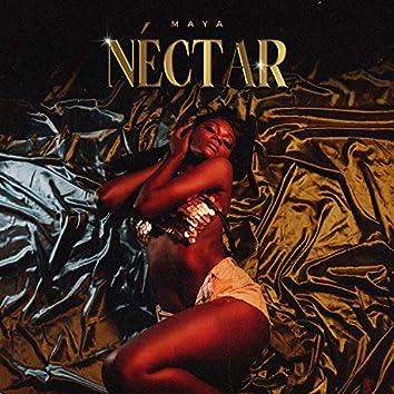 Néctar (Amo Ser Sua)