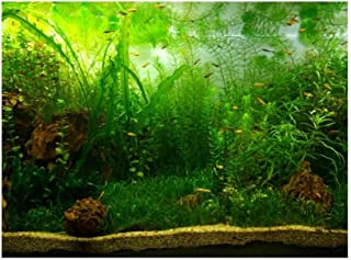 Tło Fdit do akwarium, PCV, samoprzylepne, zielona trawa wodna, 91 * 50cm