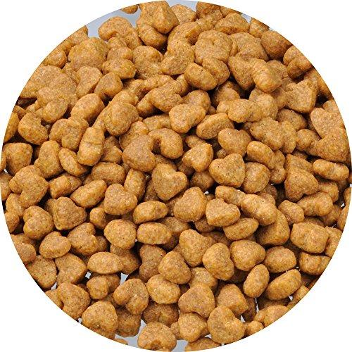 ビューティープロドッグフードドッグ子犬用12ヵ月頃まで【獣医師監修】【国産】【小分包装】チキン犬2.5kg
