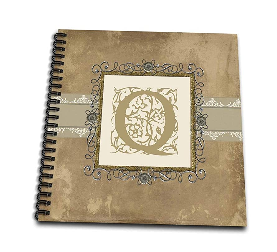 3dRose db_186363_1 Q Initial Vintage Elegant Vines and Flowersin Sepia and Pewter Look Drawing Book, 8 by 8-Inch