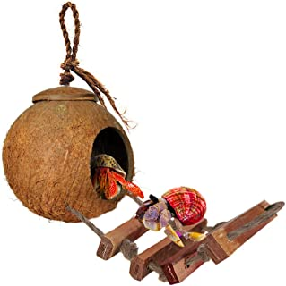 SunGrow Bird House with Ladder, Nesting Home and Bird Feeder, Mini Condo for Avians, Coco Texture Encourage Foot and Beak Exercise, 100% Raw Coconut Husk - Durable Habitat with Hanging Loop