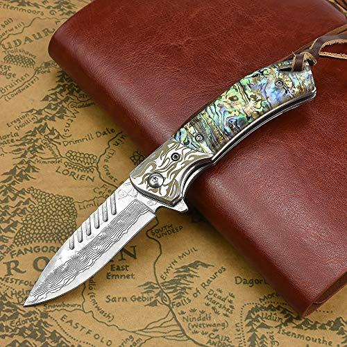NedFoss Fox Damast Taschenmesser Klappmesser Damaststahl Messer Outdoor Damastmesser, EDC Zweihand öffnen, 7cm Klinge (Farbiges Harz)