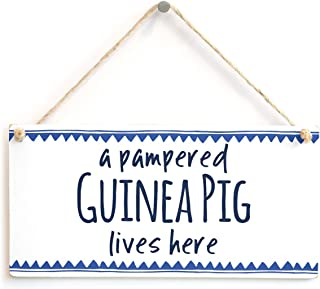 Meijiafei a Pampered Guinea Pig Lives here - Small Gift Idea for Guinea Pig Lovers 10