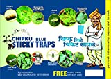 Chipku ® Blue Sticky Trap for Smaller Insects in Garden & Farm Fly