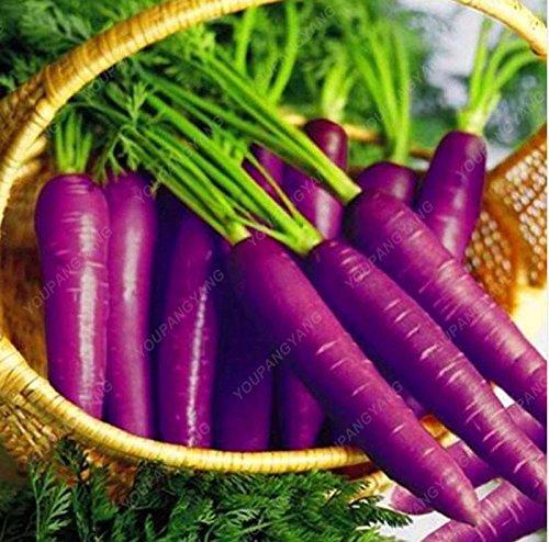 100 graines / Paquet Heirloom arc-en-Blanc Jaune Orange Violet Rouge carotte Semences Mélangé légumes Delicious Seeds bonsaï légumes noir