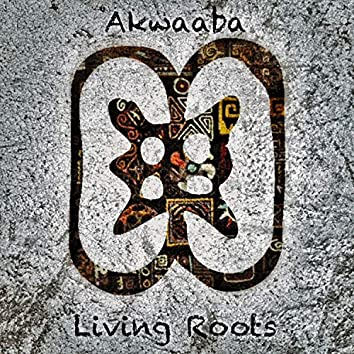 Akwaaba (feat. Ben Ada)