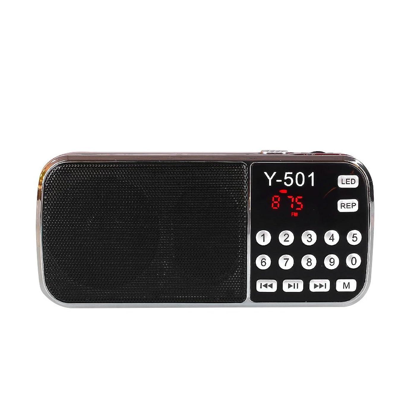 拡大するリーフレット交流するLeaftree ポケットパーソナルデジタルステレオFMラジオポータブルミニラジオ充電式スピーカー(懐中電灯TF USB AUX付き)