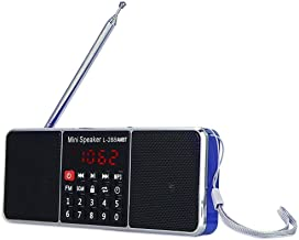 wireless portable radio