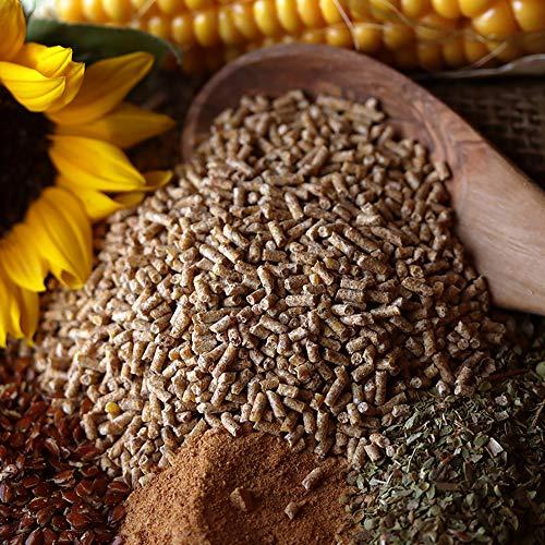 WachtelGold Nourriture pour cailles - 10 kg - Granulés de caille ProVital- Sans OGM - Aliment pour les levures