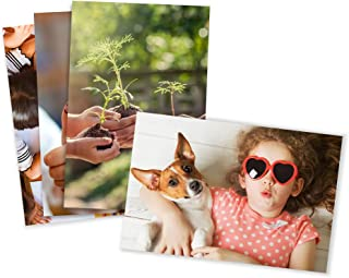 Photo Prints – Matte – Standard Size (8x10)