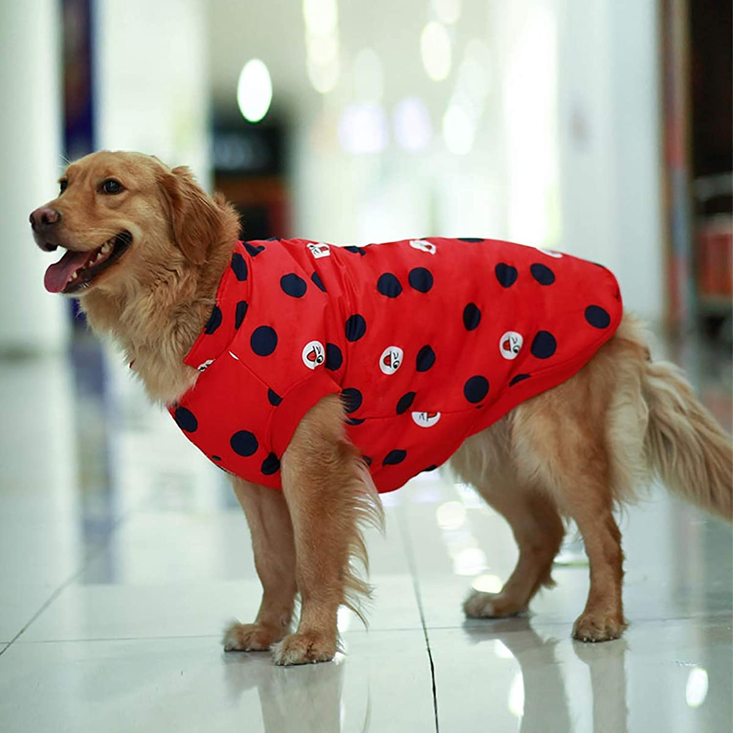Dog Clothes Winter Clothes, Teddy golden Hair Puppies, Labrador alas Big Dog Vest, Big Dog Two feet Clothes S, M, L,Red,M