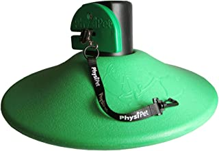 PhysiPet PHYSI_004_G Large Exercise and Entertainment Toy for Dogs - Green