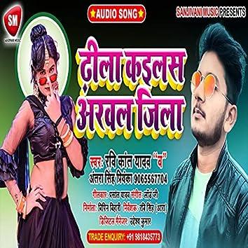 Dhila Kailas Arwal Jila (Bhojpuri Song)