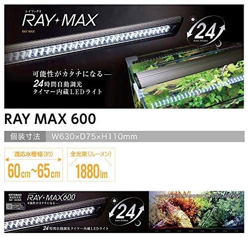 寿工芸レイマックス600