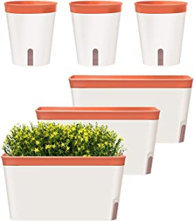 GardenBasix Self Watering Pots Window Box for Indoor Plants Home Garden Modern Decorative Flower Planter for All House Her...